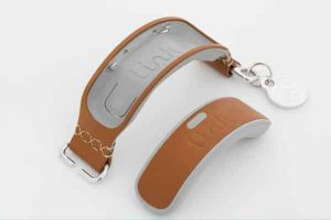Link AKC Smart Dog Collar 9