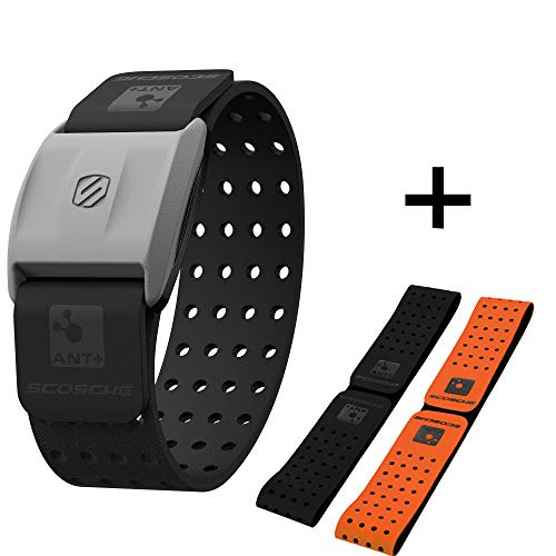 Scosche Rhythm+ Heart Rate Monitor Armband (Black)