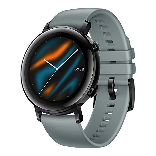 HUAWEI Watch GT 2 (42 mm) - Night Black
