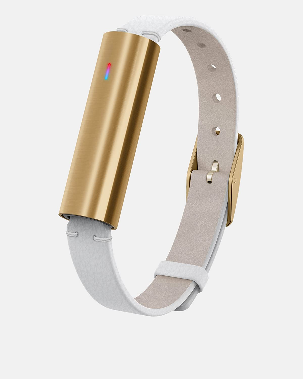 Misfit Ray fitness band