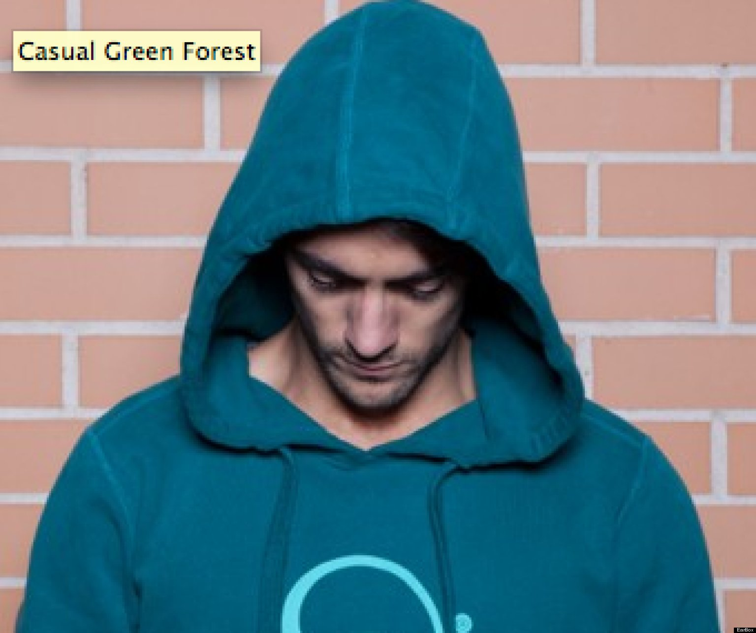 EarBOX Hoodie With Embedded Headphones Might Save Your ...