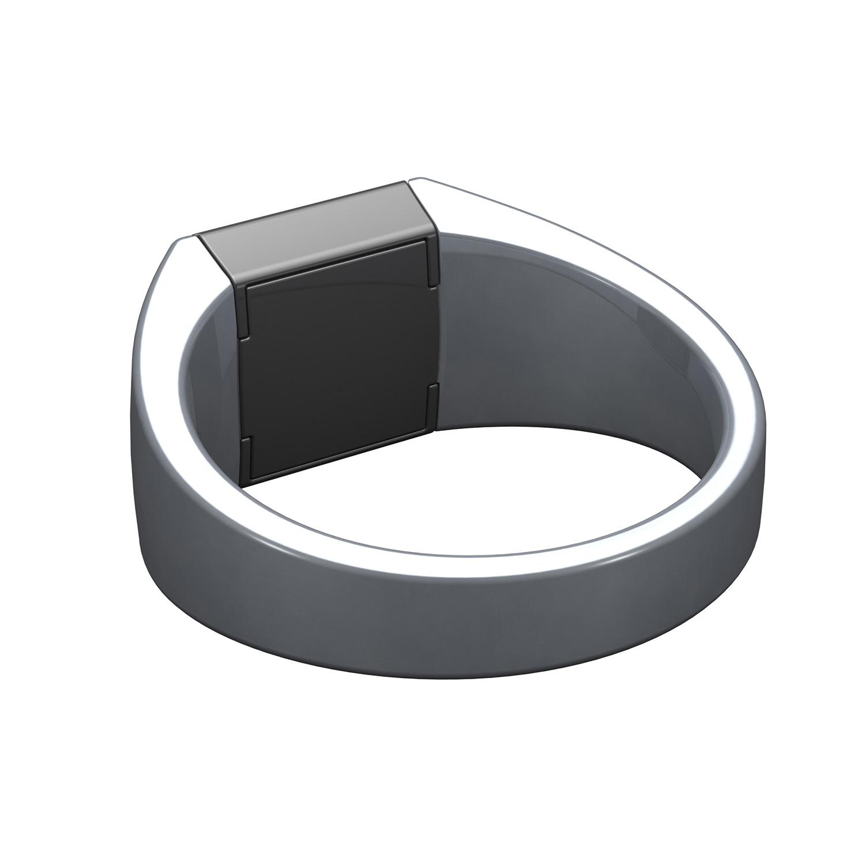 Echo + RFiD Ring // Artic White (Size 4) - The Gun Box ...