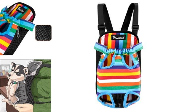 TOP-5 Best Dog Backpacks Carriers in 2019 from $17 to $80
