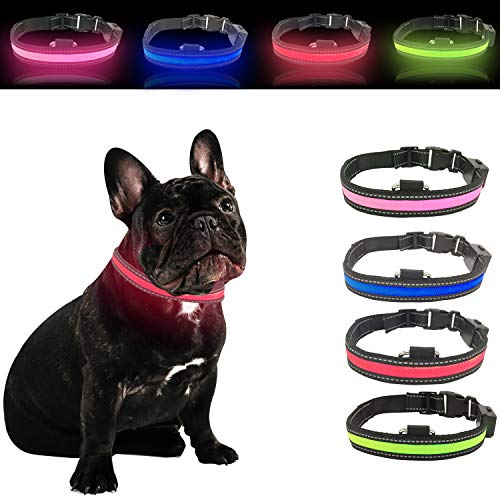 Halo LED Talis Light-Up Dog Collar (Large, Red)