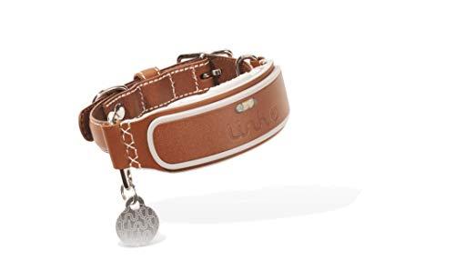 LINK AKC Smart Dog Collar - Leather/Medium (KITTN02)