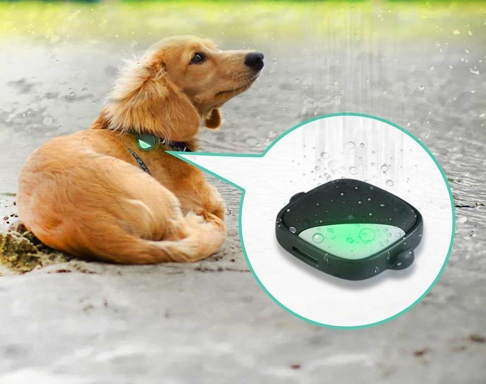 Petfon Pet GPS Tracker [Review] Features, Price & Buy ...