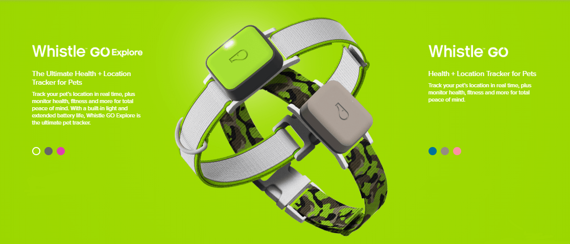 Whistle Go Explore - A Smart Band for Pets costs $129.95