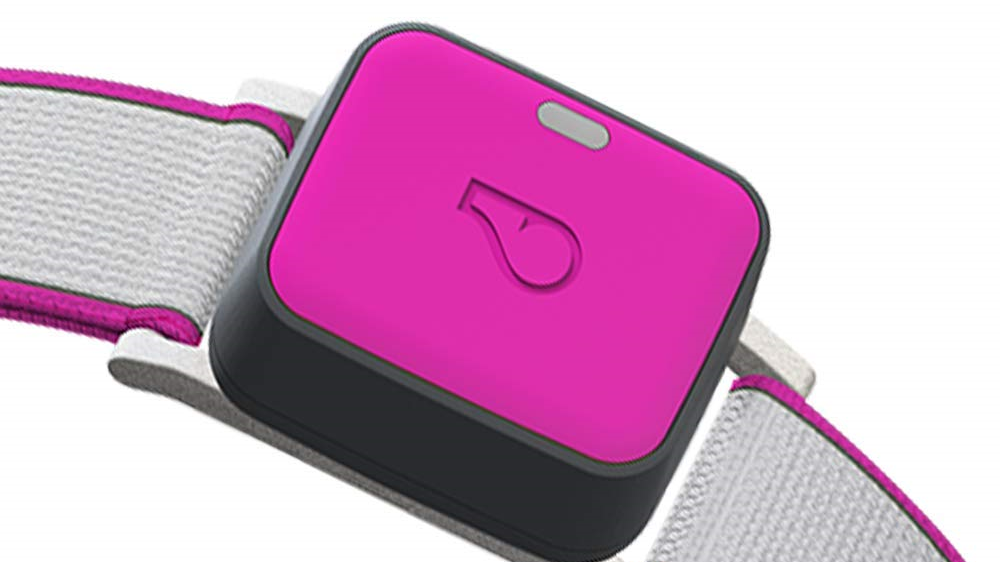 Whistle GO Explore Review & Rating | PCMag.com