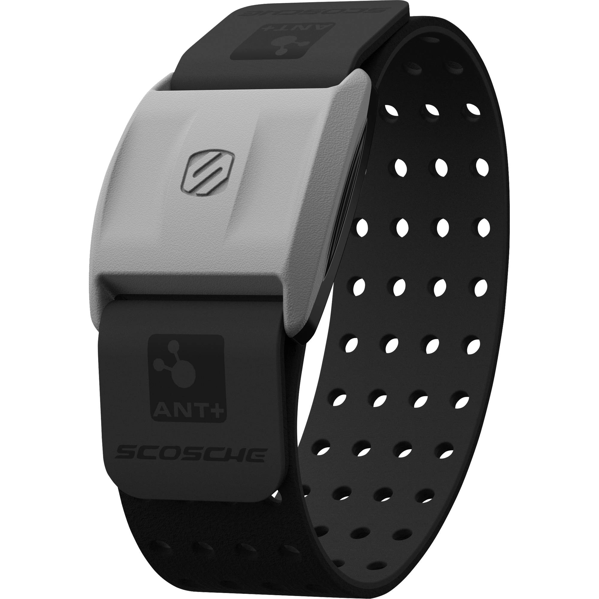 Scosche Rhythm+ Heart Rate Activity Monitor (Black) RTHM1 ...