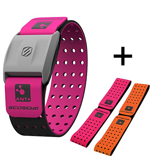 Scosche Rhythm+ Heart Rate Monitor Armband (Pink)