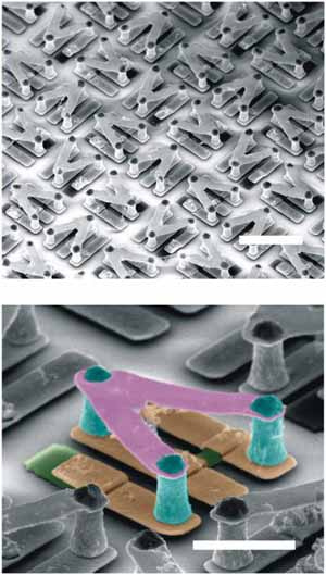 NCSU uses silver nanowires to create the world's first stretchable conductors 9